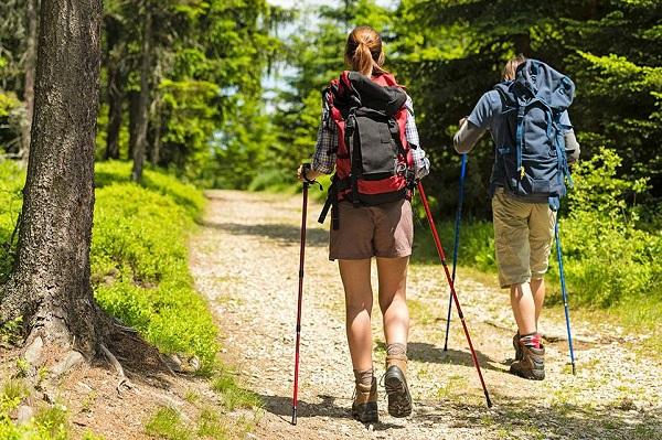 hiking-poles