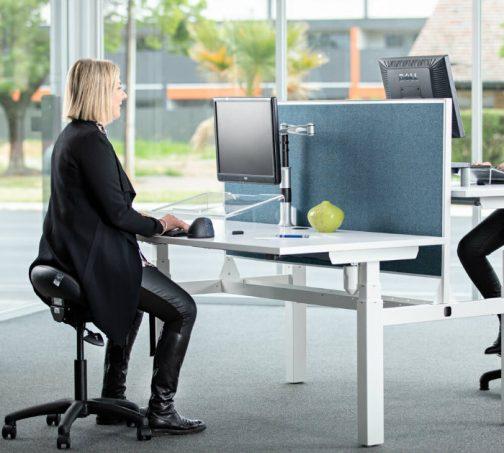 Back-to-Back-Adjustable-Standing-Desk