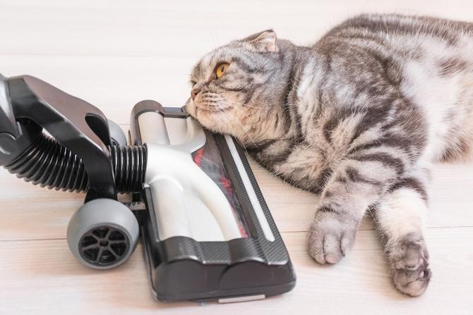 wet-vacuum-cleaner-image